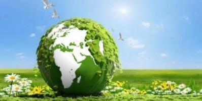 Çevreyi Korumak İçin İş Birliği İçinde Olması Gereken Kurum ve Kuruluşlar Hangileridir