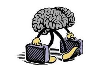 beyin göçü ile ilgili görsel sonucu