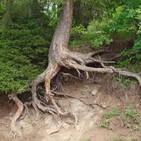 erozyon fotoğrafları ile ilgili görsel sonucu