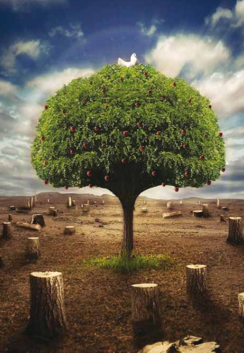 üretim tüketim doğa ile ilgili görsel sonucu