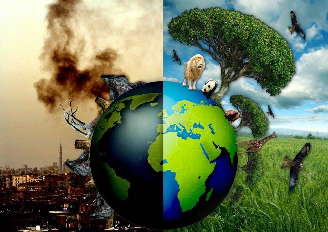çevre kirliliği ile ilgili görsel sonucu