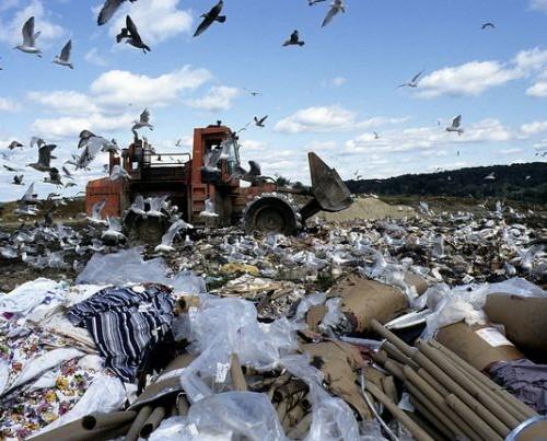 kentleşme ve çevre sorunları ile ilgili görsel sonucu