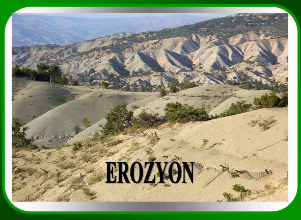 orman erozyon ile ilgili görsel sonucu