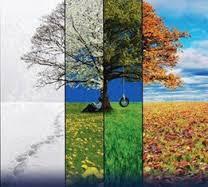 iklim ile ilgili görsel sonucu