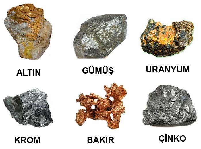 madenler ile ilgili görsel sonucu