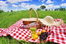 Piknik Yaparken Nelere Dikkat Etmeliyiz Uymamız Gereken Kurallar ile ilgili görsel sonucu