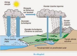 Suyun Döngüsünde Kullanılabilir Su Miktarını Olumsuz Etkileyen Faktörler Nelerdir ile ilgili görsel sonucu