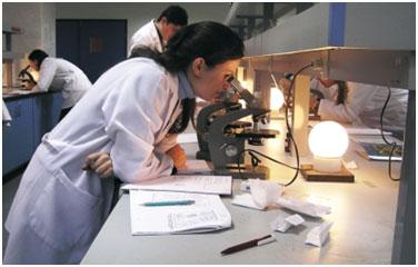 Bilimsel Gelişmelerin Artması İçin Neler Gereklidir ile ilgili görsel sonucu